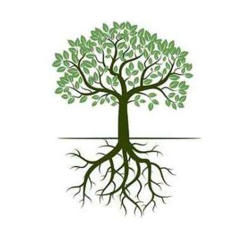 arbre-sophrologie