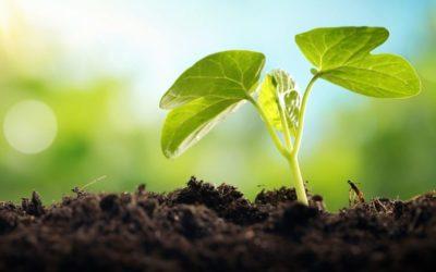 Technologies vertes, un autre monde en devenir