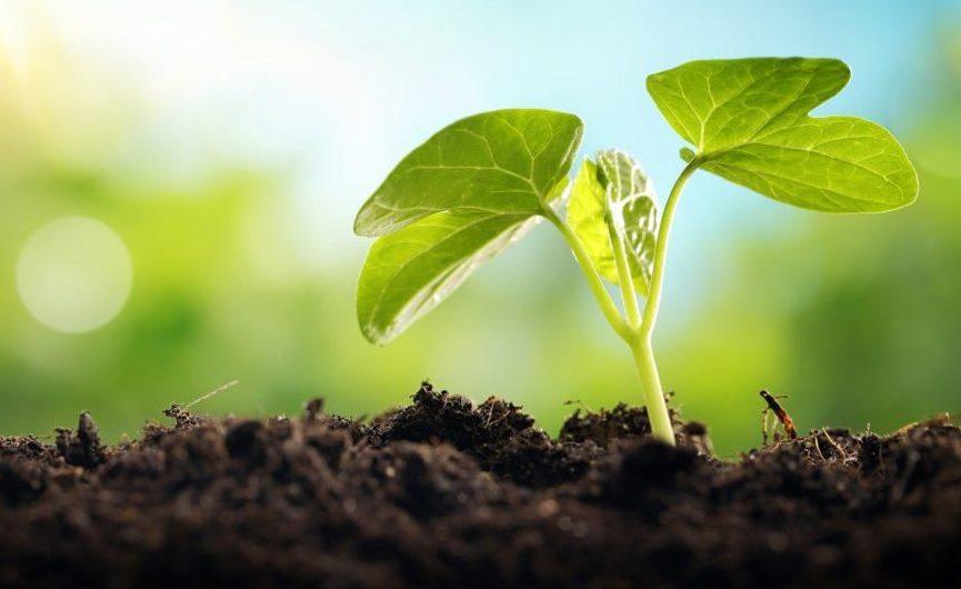 dossier : technologies vertes, un autre monde en devenir