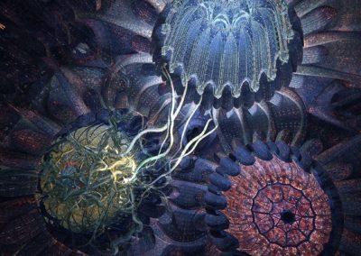 Ayahuasca – Kosmik Journey, un film de Jan Kounen